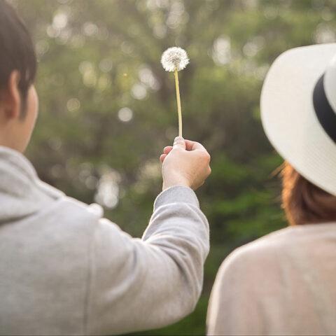 思い描く理想の結婚